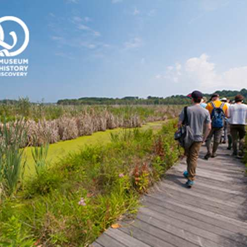 Family Hike at Mentor Marsh: Biodiversity Treasure Hunt