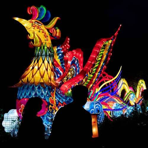 Asian Lantern Festival 2021
