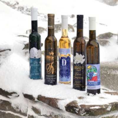 Grand River Valley Ice Wine Festival