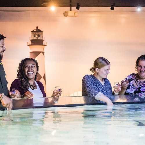 Adult Swim: Wine and Chocolate