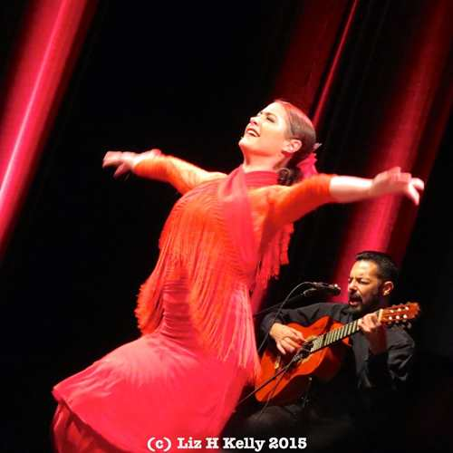 Beginner's Flamenco Dance Classes