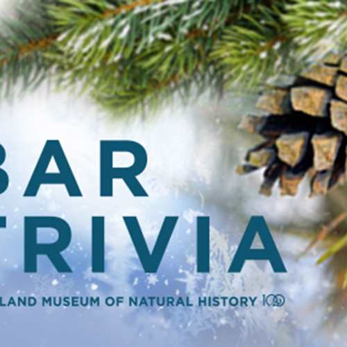 Bar Trivia: Pining for Cleveland for the Holidays (Sponsored by Seven Brothers Distilling Co.)